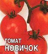 Джемпер Томат С Доставкой
